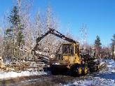 Forwarder in Stetson, Maine