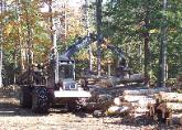 Forwarder unloading wood in Holden, Maine